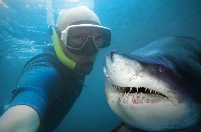 tubaroes-selfies